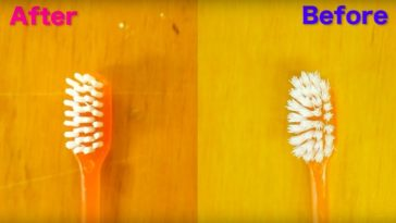 revive old toothbrush